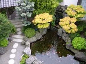Interesting Facts About Traditional Japanese Garden Designs